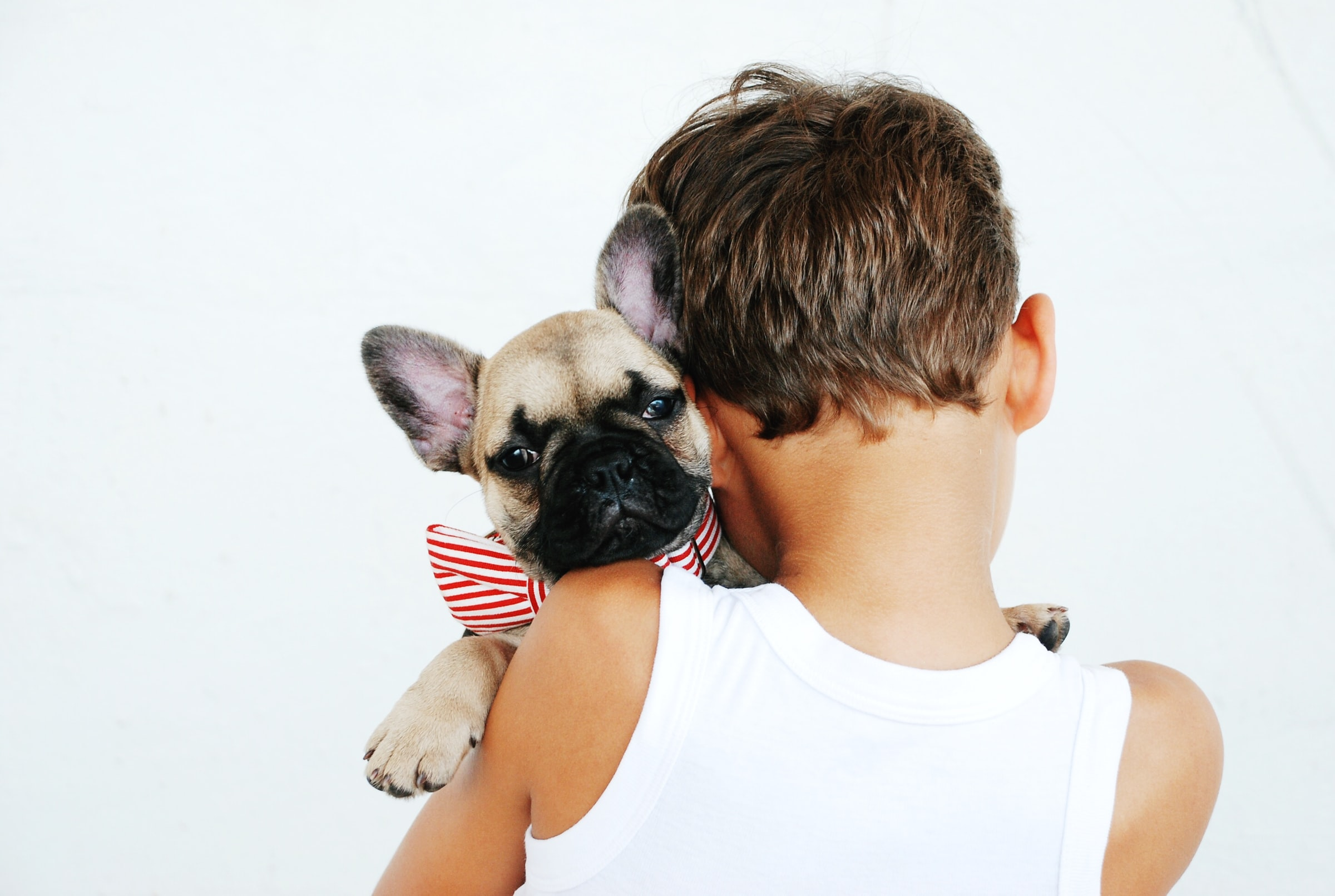 5 Types of Pets for your Children
